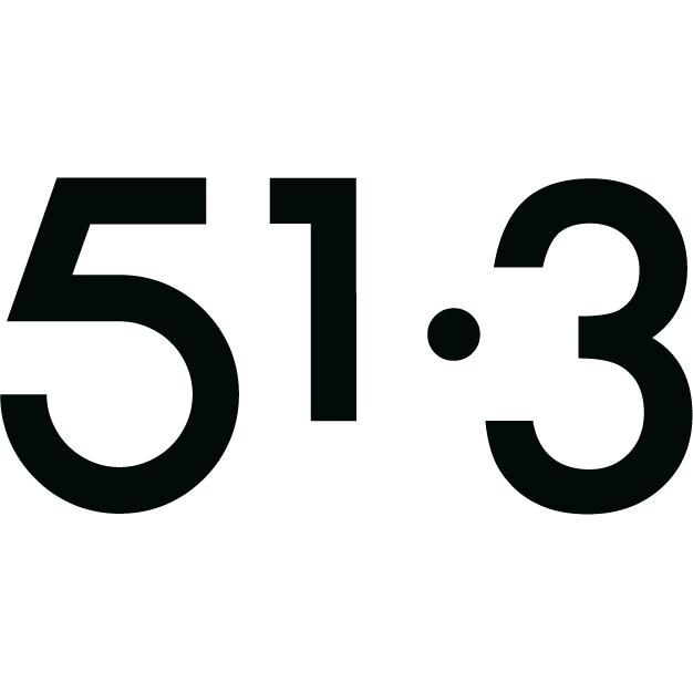 logo 51.3 Ardex